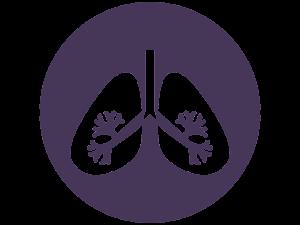 biofeedback légzés pneumográf