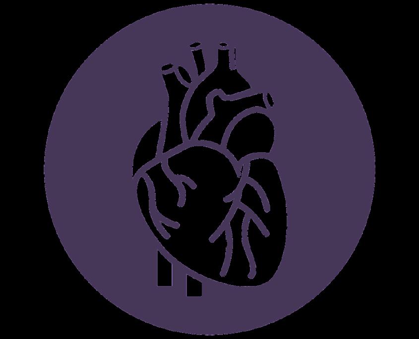 szívfrekvenciavariabilitás szívkoherencia biofeedback